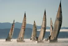 Regatta on the Bay
